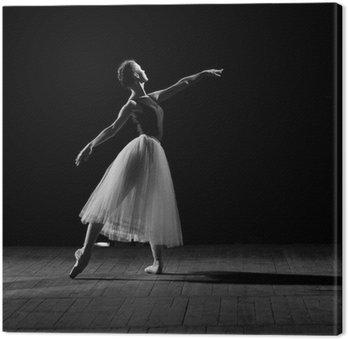 Portret młodej pięknej baletnicy