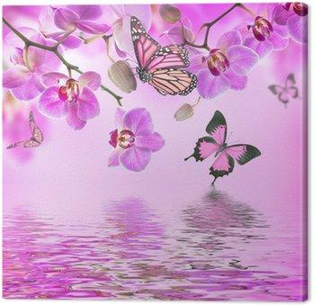 Kwiatów tle z tropikalnych storczyków i motyl