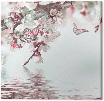 Morelowe kwiaty na wiosnę, kwiatów w tle