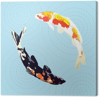 Chiński karpie, japońskie koi ryb ilustracji wektorowych